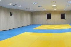 bodyguard center - sala (2)