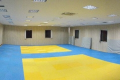 bodyguard center - sala (1)